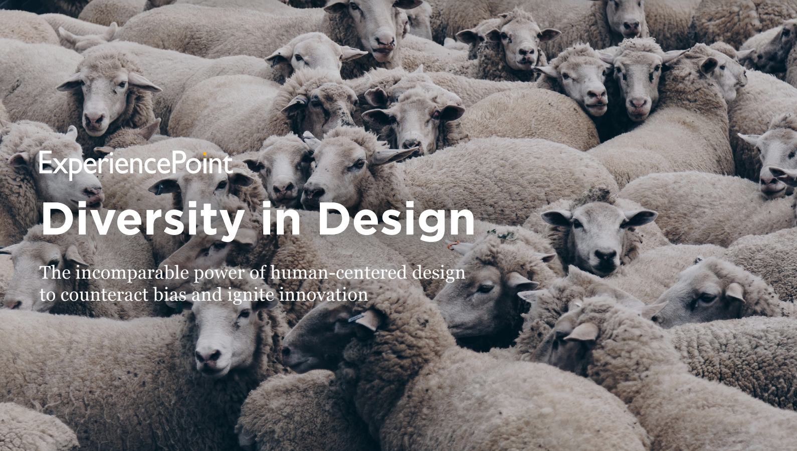 Diversity-in-Design